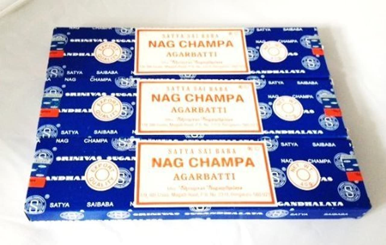消す脅かす充電Satya Nag Champa Incense Sticks 40 Gram 3 Pack by Satya [並行輸入品]