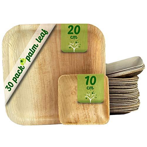 GoBeTree Platos Desechables de Hoja de Palma 30 Piezas, 25 Platos Cuadrados de 20 cm y 5 Platos de 10 cm. vajilla Rustica de Madera para barbacoas y cumpleaños. Biodegradable.