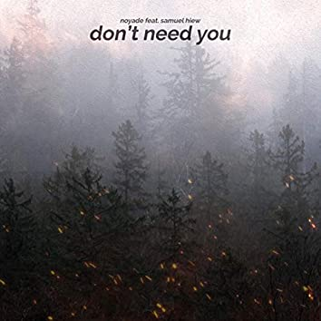 Don't Need You (feat. Samuel Hiew)