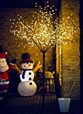 Fashionlite 8FT 600 LED Cherry Blossom Flower Tree Light Decoration Home/Party/Festival/Christmas/Indoor Use