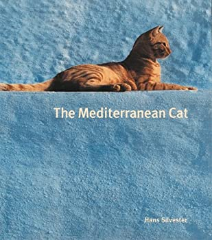 The Mediterranean Cat