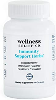 Immunity Support Herbs with Echinacea, Andrographis Paniculata & Ginger Powder - Best Immune System Booster Supplement for...