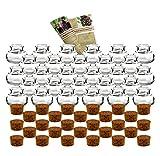 """gouveo 28er Set kleine Korkengläser """"Mini 40"""" incl. Korken und Flaschendiscount-Rezeptbroschüre für Gastgeschenke, Gewürze, Glasdose, Aufbewahrungsglas, Korkenglas rund"""