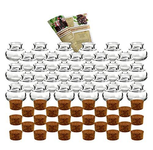 """gouveo 28er Set kleine Korkengläser \""""Mini 40\"""" incl. Korken und Flaschendiscount-Rezeptbroschüre für Gastgeschenke, Gewürze, Glasdose, Aufbewahrungsglas, Korkenglas rund"""