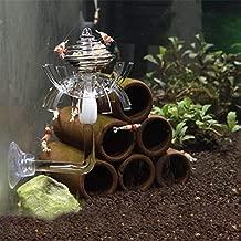 Best Design Multifunction Basket Ornamental Shrimp Fish Tank Feeder Aquarium Moss Dry, Glass Feeding Bowl - Freshwater Feeder Shrimp, Feeding Glass Bowl, Tropical Fish Feeding