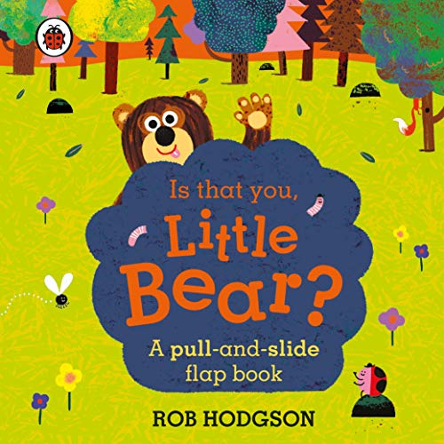 Is that you, Little Bear?: A pull-and-slide flap book