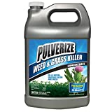 Pulverize PWG-C-128 Weed Killer, Concentrate