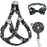 PUPTECK Dog Harness and Leash Collar Set -...