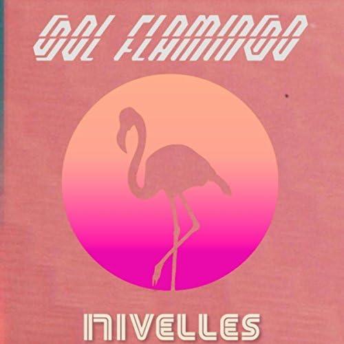 Sol Flamingo & Nivelles