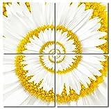 Haus und Deko Juego de 4 cuadros con impresión fotográfica (50 x 50 cm, montaje fácil), diseño de margaritas y espirales