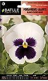 Semillas de Flores - Pensamiento Gigante