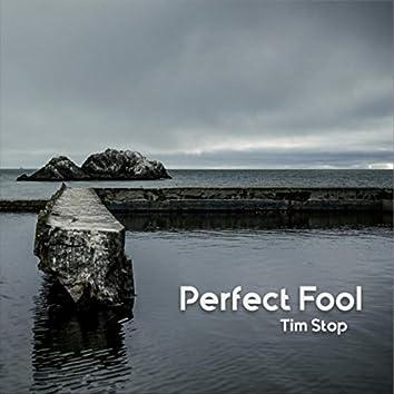 Perfect Fool