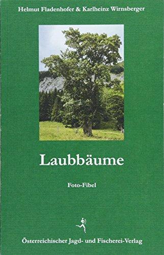 Laubbäume: Foto-Fibel