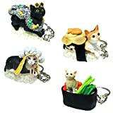 Sushi Cat Clever Idiots Nekozushi Keychain - Blind Box Includes 1 of 4 Collectable Figurines - Authentic Japanese Design Collectable Figurines - (Version 3)