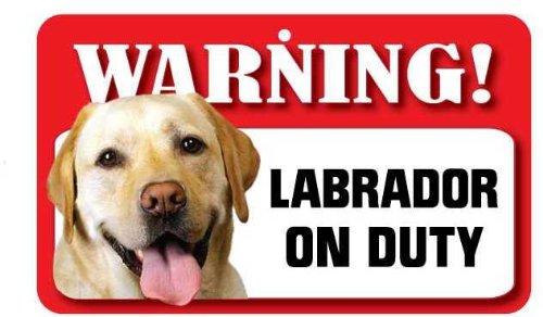 Instant Gifts Dog Signs Labrador Jaune pour Animal Domestique Sign – Carte lustrée