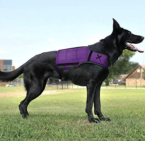 Xdog Weight & Fitness Vest for Dogs - A Weighted Dog Vest Used to Build Muscle, Improve Performance, Combat Obesity & Anxiety - Improve Your Dog's Overall Health & Exercise. (Small, Purple)