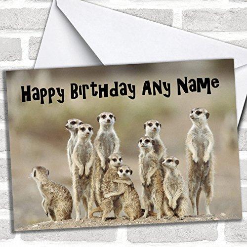 Veel Meerkats Grappige Aangepaste Verjaardag Groeten Kaart- Verjaardagskaarten/Dieren, Wildlife & Huisdieren Kaarten