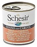 Schesir Dog thunf. avec Les Carottes, Lot de 8(8x 285g)