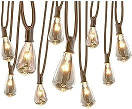 allen + roth 13-ft 10-Light White Plug-in Bulbs String Lights