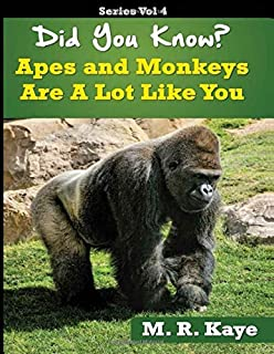 Did You Know? Apes and Monkeys Are A Lot Like You