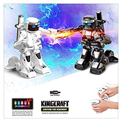 Kanzd 2PC RC Battle Boxing Robot/Toys, Remote Control 2.4G Humanoid Fighting Robot (A)