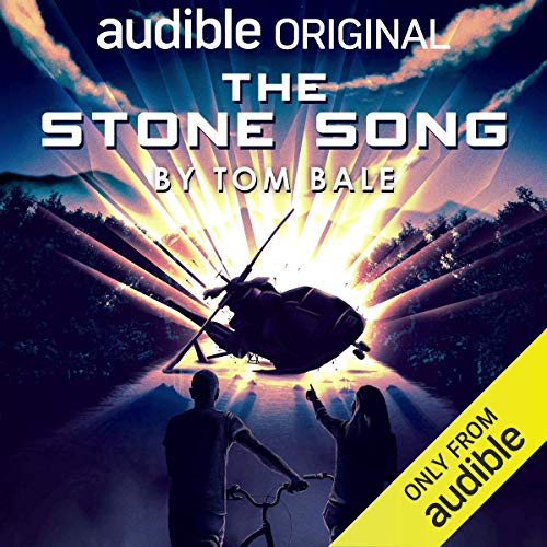 Couverture de The Stone Song