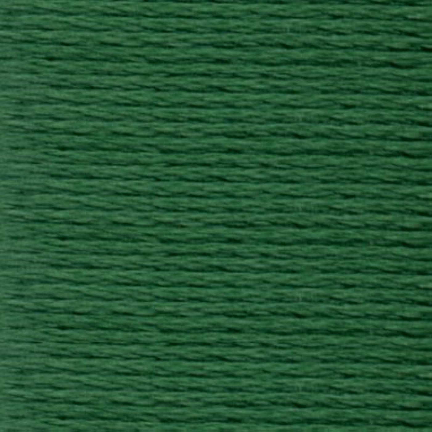 Anchor Six Strand Embroidery Floss 8.75 Yards-Juniper Medium Dark 12 per Box