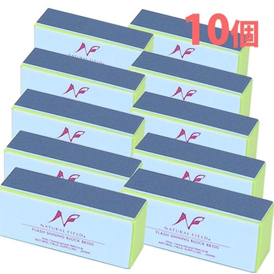 教育学モデレータメトロポリタンフラッシュシャイニングブロック 10個セット 爪磨き