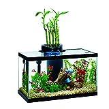 Elive Aqua Duo 10 Gallon LED Kit Aquarium Starter Kits