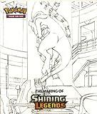 Shining Legends Super-Premium Collection Art Book