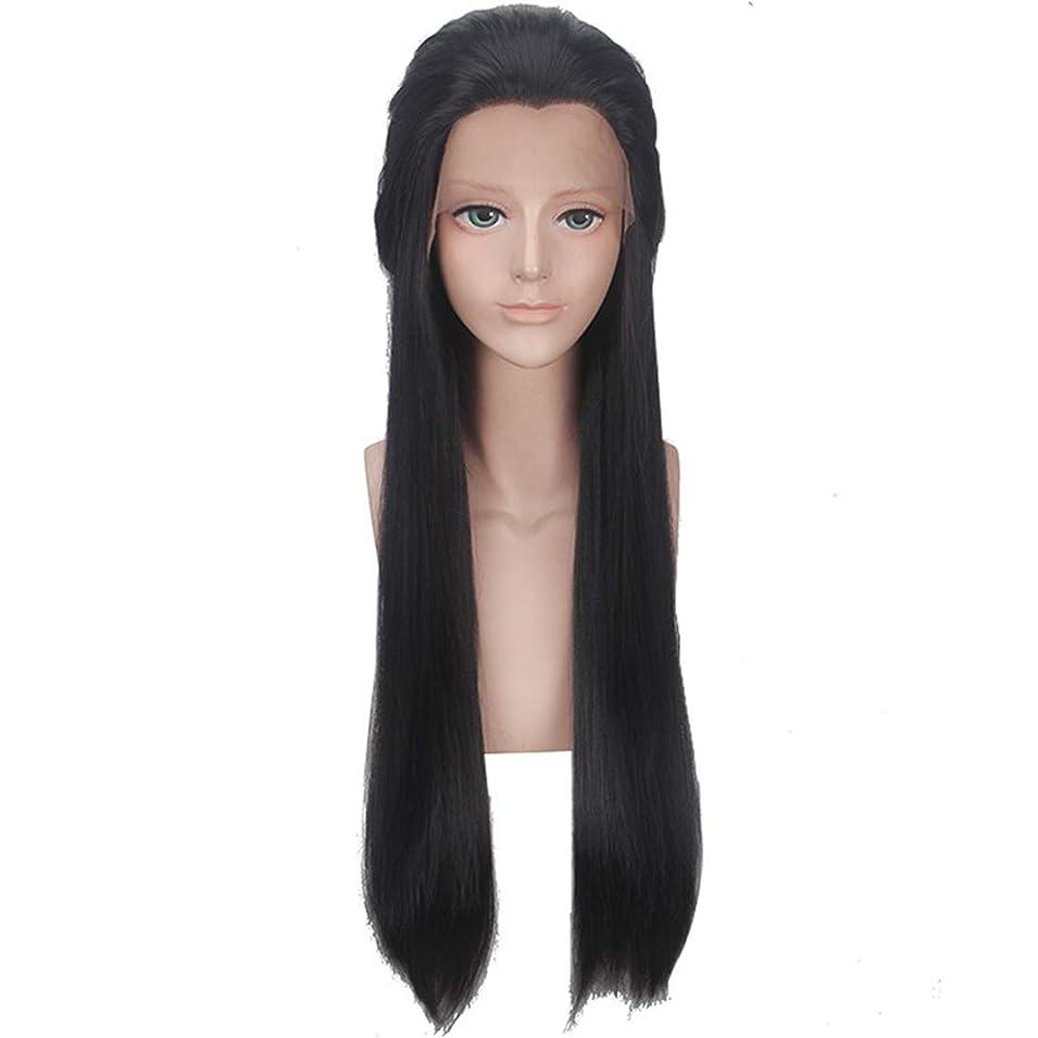Koloeplf 女性 黒い 美しさは、長い ストレート ヘア 化学繊維 フロントレース ウィッグ ファッション ウィッグを指摘 (Color : ブラック)