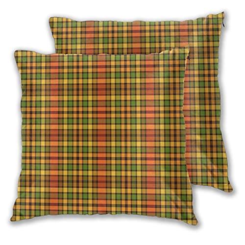 Juego de 2 fundas de almohada con diseño de abejorro oxidado a cuadros decorativos de dos lados para sofá, cama, sala de estar, 45,7 x 45,7 cm