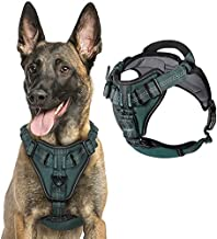 rabbitgoo Dog Harness No Pull, Adjustable Dog Walking Harness with 2 Metal Clips & Shock-Absorbing Bungee Straps, Soft Padded Pet Vest Harness Reflective with Handle for Extra Large Dogs (Green, XL)