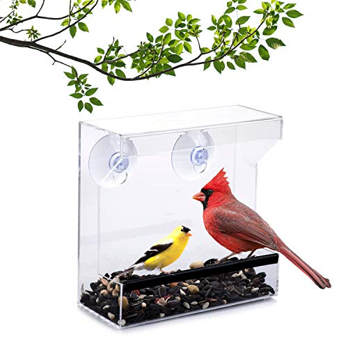 Wild Birds of Joy Window Bird Feeder with Super Strong...