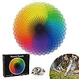 Puzzle Tondo, 1000 Pezzi Rotonda Puzzle, Puzzle Fai da te Paesaggi, Giocattoli Educativi, Creative Art Puzzle, Puzzle Impegnativi, Regalo Divertente Gioco per Famiglie per Bambini Adulti (Arcobaleno)