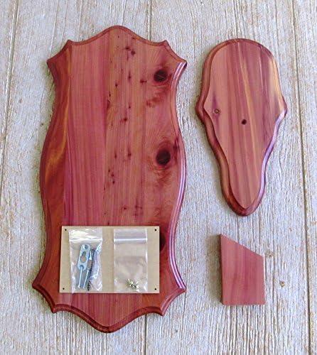 The Taxidermists Woodshop Cedar Mount Pedestal Super-cheap Gorgeous Picture European
