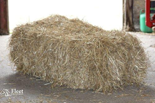 Pelota de heno para caballos – Aproximadamente 20 kg/100 x 50 x 40 cm – en caja – Free P&P