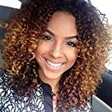 Trend - Parrucca sexy afro crespa, riccia da donna, con parrucca riccia, colore nero e marrone, resistente al calore, con cappuccio in omaggio