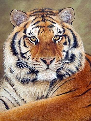 Pintura de diamante Tigre 5D cuadrado completo bordado de diamantes animal punto de cruz mosaico kit de pintura hogar pintura de diamantes A3 30x40cm