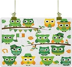Xlcsomf Living Room Decorative Painting St. Patricks Day Beautifully Decorated Irish Owls with Leprechaun Hats on Trees Shamrock Leaves Horseshoe W24 x L20 Green and White