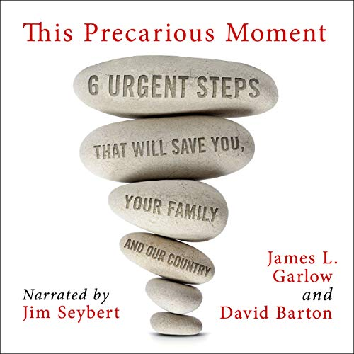 This Precarious Moment: Six Urgent Steps That Will Save You, Your Family, and Our Country audiobook cover art