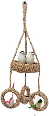 Jinagam Wonderful Wall Hanging 5 Birds with Egg for Home Decor and Gifting (Multicolour)/ Garden Decoration Crafts/Return Gift Decorative Showpiece