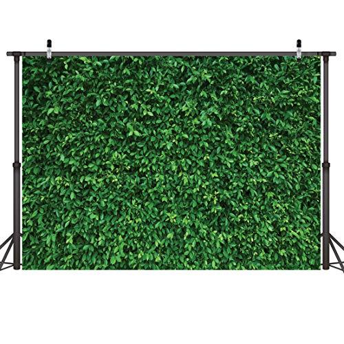 LYWYGG 7x5FT Hojas Verdes Fotografía Telón de Fondo Paisaje Natural Color Transparente Plegable Fácil de Llevar para la Fiesta de Cumpleaños Actividades al Aire Libre Accesorios de Estudio CP-87
