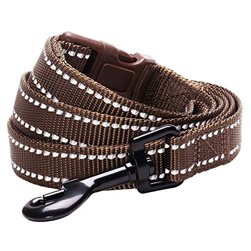 Blueberry Pet Essentials 6 Colors Durable 3M Reflective Classic Dog Leash 5 ft x 5/8, Mahogany Brown, Small, Leashes for Dogs