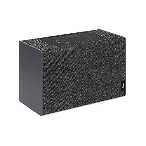 TIBO Kameleon Touch | WLAN- und Bluetooth-Lautsprecher mit Amazon Alexa | Multiroom Hi-Fi- Lautsprecher mit Internetradio und drei austauschbaren Seitenteilen | Grau