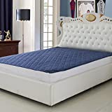 Signature Double Bed Waterproof and Dust Proof Mattress Protector (72X78-inch, Blue)
