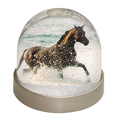 Advanta Black Horse im Meer Schneekugel, Geschenk, Mehrfarbig, 9,2 x 9,2 x 8 cm
