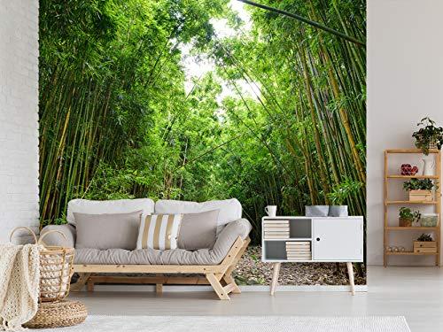Fotomural Vinilo para Pared Bosque de Bambú   Fotomural para Paredes  ...