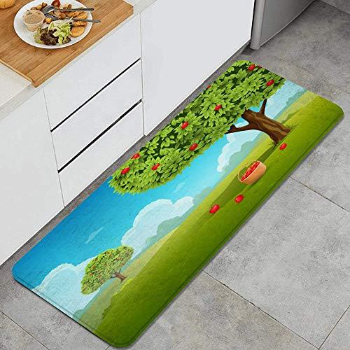 PANILUR Tappeto antiscivol,Giacimento di Frutta Verde del Giardino del Cielo della pianta della Natura d'Annata della Bevanda dell'alimento del Paesaggio delle Mele del canestro Verde del frutteto