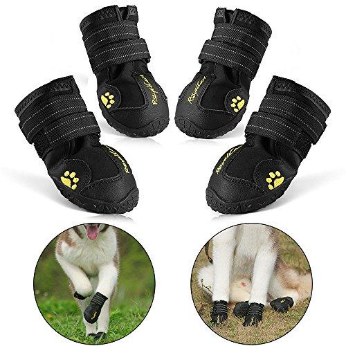 RoyalCare Zapatos Perro
